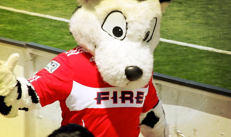 fire_dog copy